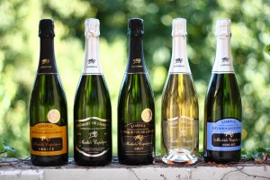 Blanquette de Limoux from the Capdepon family http://www.capdepon-blanquette.fr/