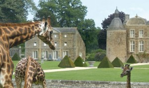 This zoological park near Saint Malo in Brittany should be part of your family holiday to France