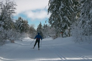 Nordic skiing or 'ski de fond' in the Sancy mountains of the Auvergne