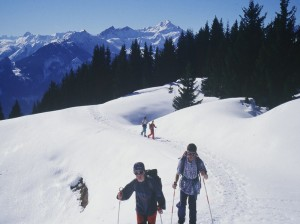 Snowshoeing on waymarked circuits in the Savoie area of the Alps