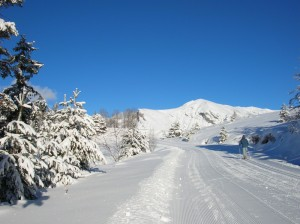 Cross country skiing or ski de fond in France