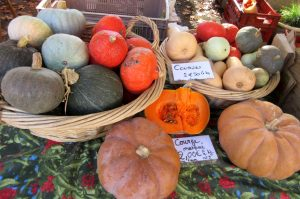 Autumn squash at market