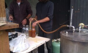 Apple juice bottling in France
