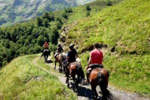 The Castillon horse on a Pyrenees horse trekking holiday